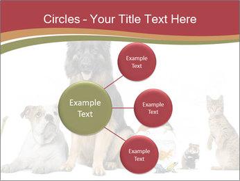 0000061083 PowerPoint Templates - Slide 79