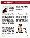 0000061083 Word Template - Page 3