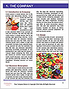 0000061085 Word Template - Page 3