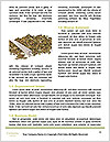 0000061109 Word Templates - Page 4
