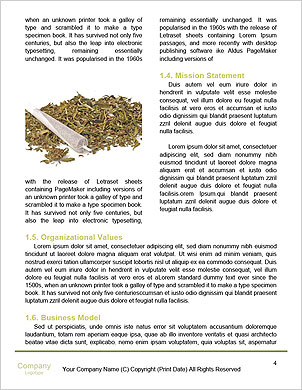 0000061109 Word Template - Page 4