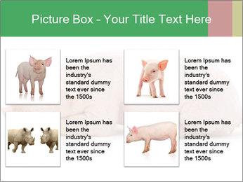 0000061112 PowerPoint Template - Slide 14