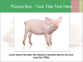 0000061112 PowerPoint Template - Slide 15