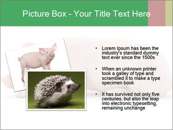 0000061112 PowerPoint Template - Slide 20