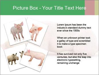 0000061112 PowerPoint Template - Slide 23