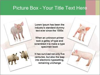 0000061112 PowerPoint Template - Slide 24