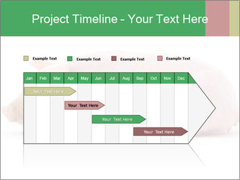 0000061112 PowerPoint Template - Slide 25
