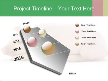 0000061112 PowerPoint Template - Slide 26