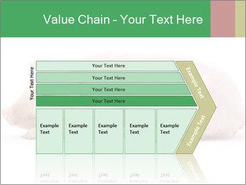 0000061112 PowerPoint Template - Slide 27