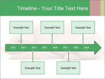 0000061112 PowerPoint Template - Slide 28