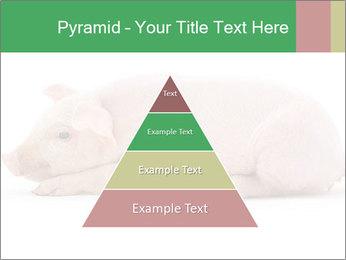 0000061112 PowerPoint Template - Slide 30