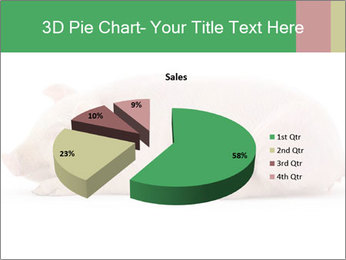 0000061112 PowerPoint Template - Slide 35