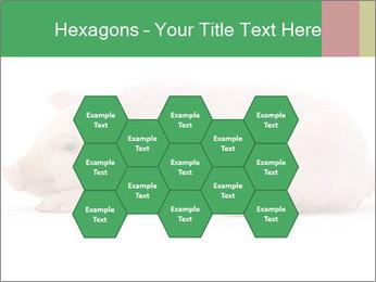 0000061112 PowerPoint Templates - Slide 44