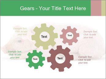 0000061112 PowerPoint Template - Slide 47