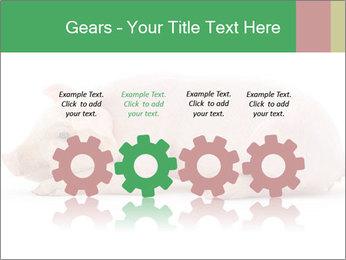 0000061112 PowerPoint Template - Slide 48