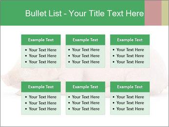 0000061112 PowerPoint Templates - Slide 56