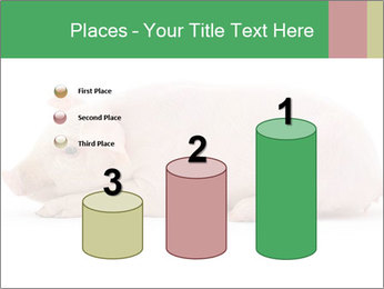 0000061112 PowerPoint Template - Slide 65