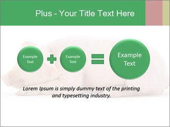 0000061112 PowerPoint Template - Slide 75