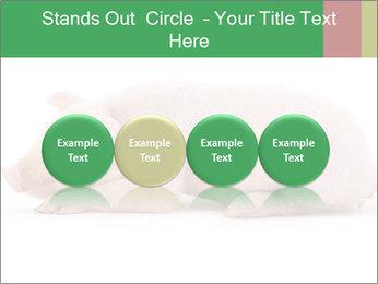 0000061112 PowerPoint Template - Slide 76