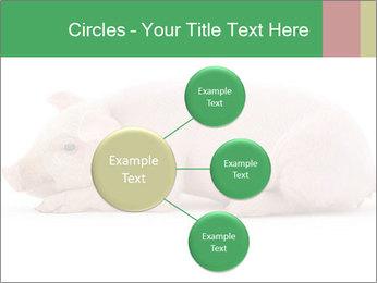 0000061112 PowerPoint Templates - Slide 79