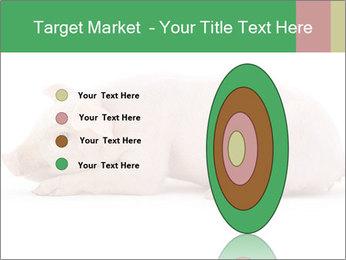0000061112 PowerPoint Template - Slide 84