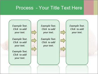 0000061112 PowerPoint Template - Slide 86