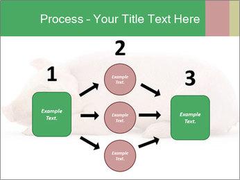 0000061112 PowerPoint Template - Slide 92