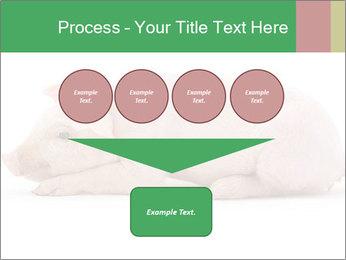 0000061112 PowerPoint Template - Slide 93