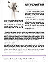 0000061114 Word Template - Page 4