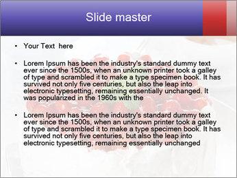 0000061115 PowerPoint Templates - Slide 2