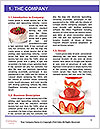 0000061115 Word Template - Page 3
