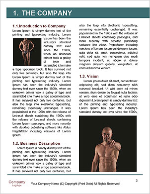 0000061117 Word Template - Page 3