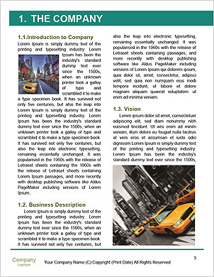 0000061128 Word Template - Page 3