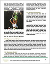 0000061134 Word Template - Page 4