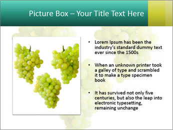 0000061136 PowerPoint Template - Slide 13