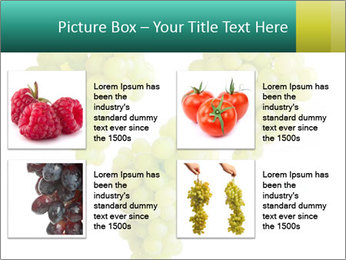 0000061136 PowerPoint Template - Slide 14