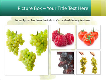 0000061136 PowerPoint Template - Slide 19