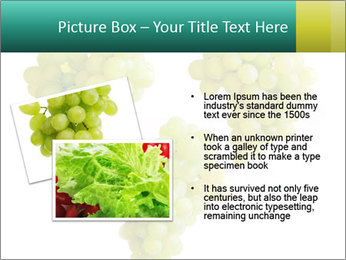 0000061136 PowerPoint Template - Slide 20