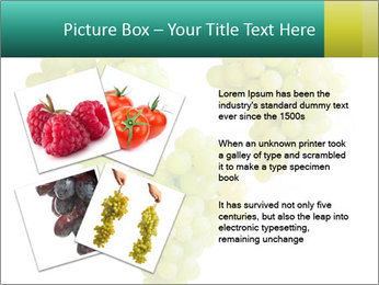 0000061136 PowerPoint Template - Slide 23
