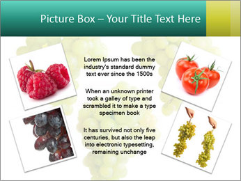 0000061136 PowerPoint Template - Slide 24