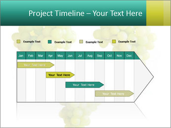 0000061136 PowerPoint Template - Slide 25
