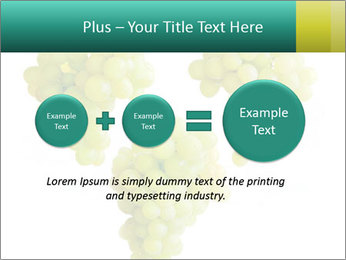 0000061136 PowerPoint Template - Slide 75
