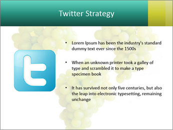 0000061136 PowerPoint Template - Slide 9
