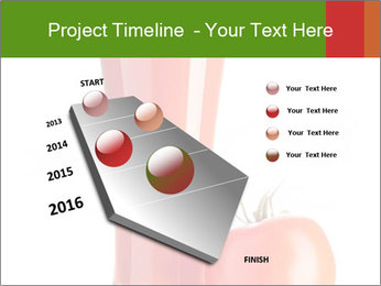 0000061140 PowerPoint Templates - Slide 26