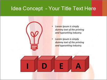 0000061140 PowerPoint Templates - Slide 80