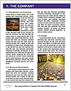 0000061141 Word Templates - Page 3