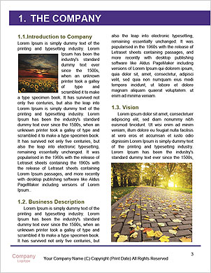 0000061141 Word Template - Page 3