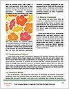 0000061148 Word Templates - Page 4