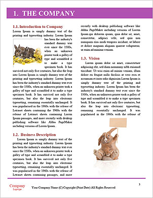 0000061152 Word Template - Page 3