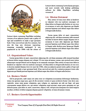 0000061152 Word Template - Page 4